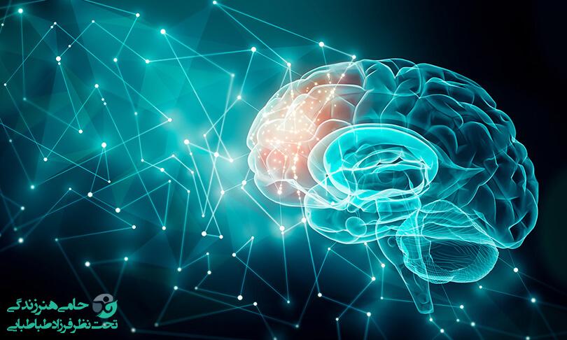 افزایش قدرت یادگیری مغز
