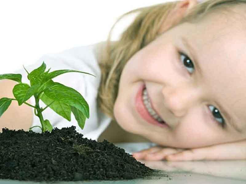 نکات تربیتی فرزندان و آموزش والدین