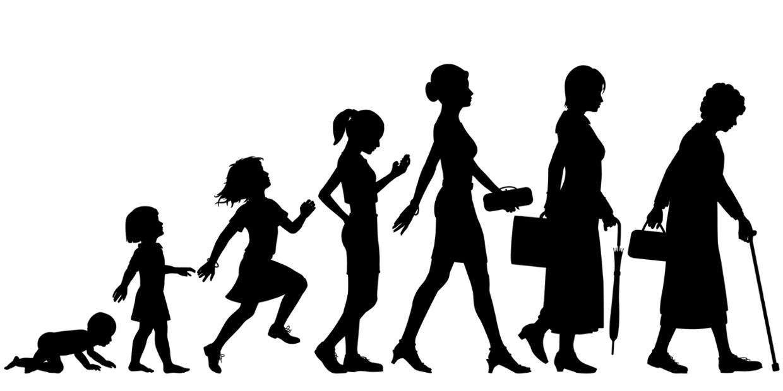 مراحل رشد انسان از کودکی تا پیری | میانسالی