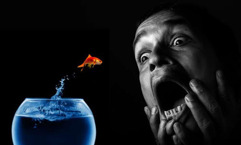 ترس از ماهی | علل، نشانه ها و نحوه درمان فوبیای ماهی