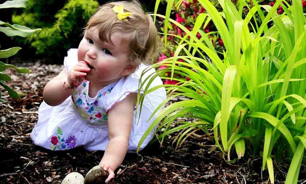 خاک خوردن کودک | علل، عوارض و درمان خاک خوردن