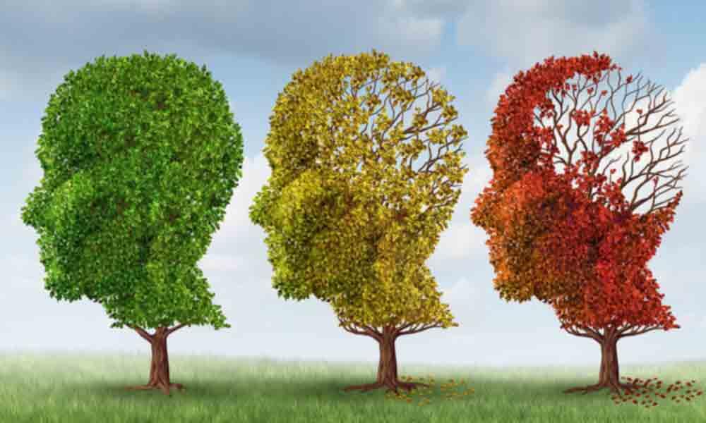 دمانس یا زوال عقل | نشانه ها، علل و درمان زوال عقل