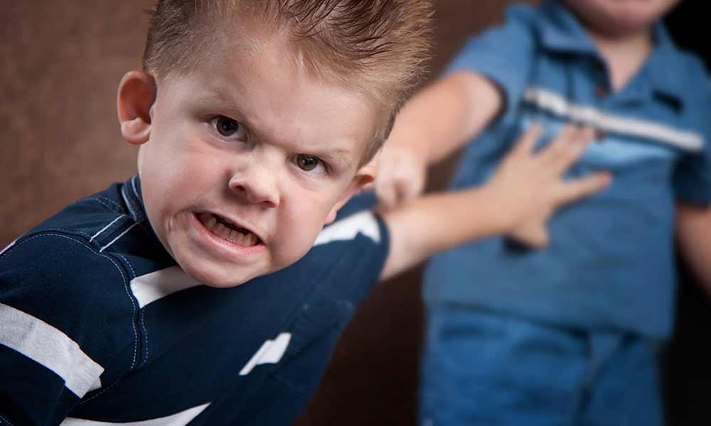 پرخاشگری کودکان | علل و نحوه واکنش به پرخاشگری کودکان
