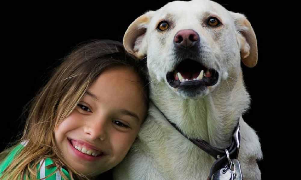 حیوانات خانگی و انسان | فوائد و معایب داشتن حیوان خانگی