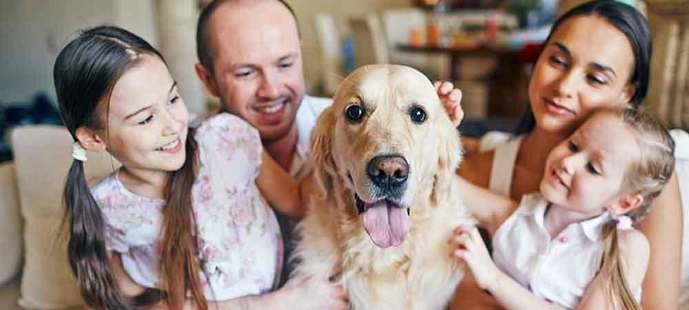 فوائد داشتن حیوان خانگی
