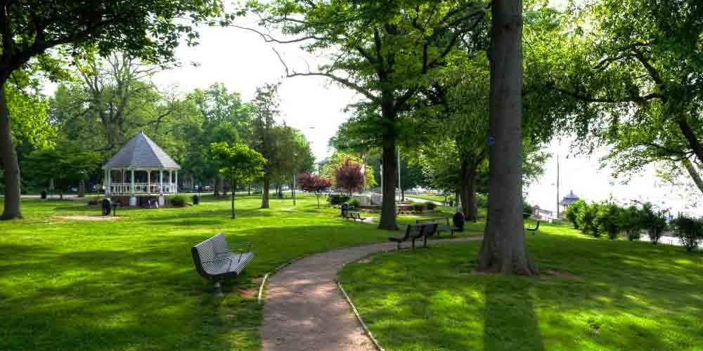 حضور منظم در پارکها و فضای سبز