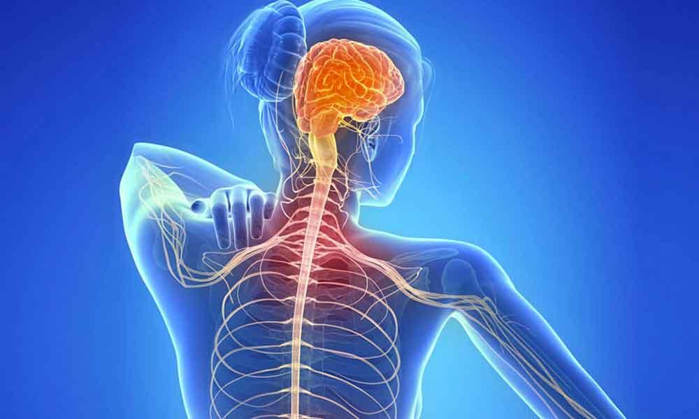 بیماری ام اس (MS) | نشانه ها، علل و درمان بیماری ام اس
