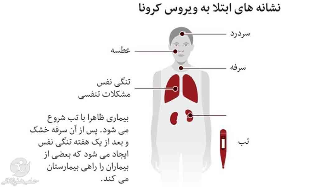 علائم کرونا | راه های شناسایی سریع تر نشانه ها و علایم کرونا