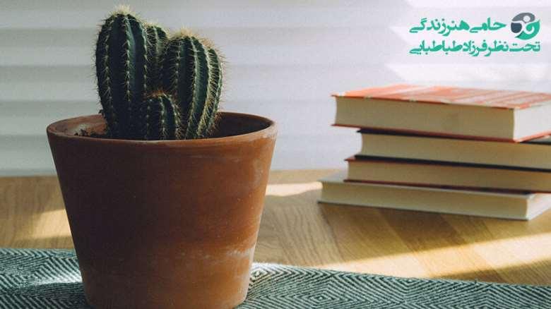 کتاب های درمان افسردگی   برای رهایی از افسردگی چه کتابی بخوانیم؟