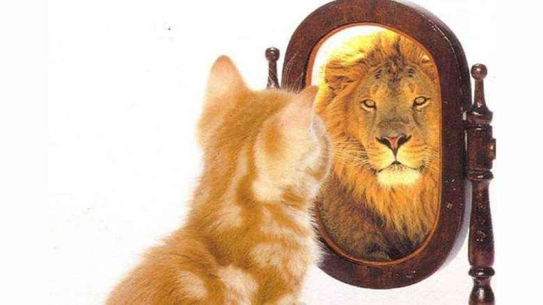خودآگاهی چیست | راههای کسب مهارت خودآگاهی