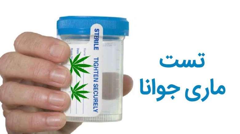 تست ماریجوانا یا گل   علل منفی شدن تست اعتیاد به ماریجوانا ( ماده مخدر گل )