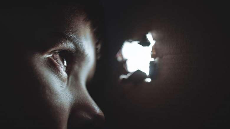 شرطی سازی ترس | ترس چگونه شرطی می شود؟