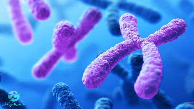 تاثیر ژنتیک بر اعتیاد | ژنتیک چقدر در گرایش افراد به مواد مخدر تأثیر دارد؟