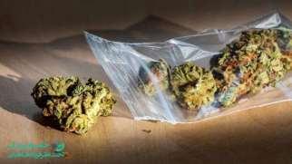 ماده مخدر کمیکال | فرق کیمیکال با گل در چیست؟