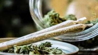 ترک ماریجوانا | بهترین روش ترک ماده مخدر گل