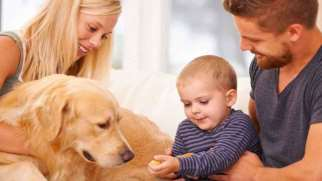 تاثیر حیوان خانگی بر کودکان | از دیدگاه روانشناسان