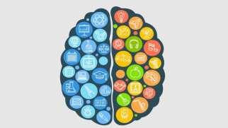 نیمکره های مغز | عملکرد نیمکره های مغز و انجام تست برتری نیمکره ها