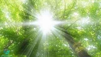 فواید نور خورشید | نور خورشید چه فایده ای برای سلامتی دارد ؟
